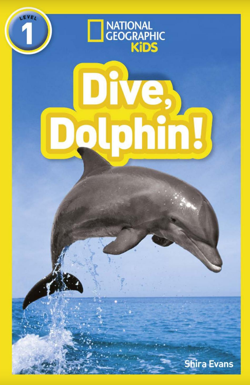National Geo Kids Dive Dolphin