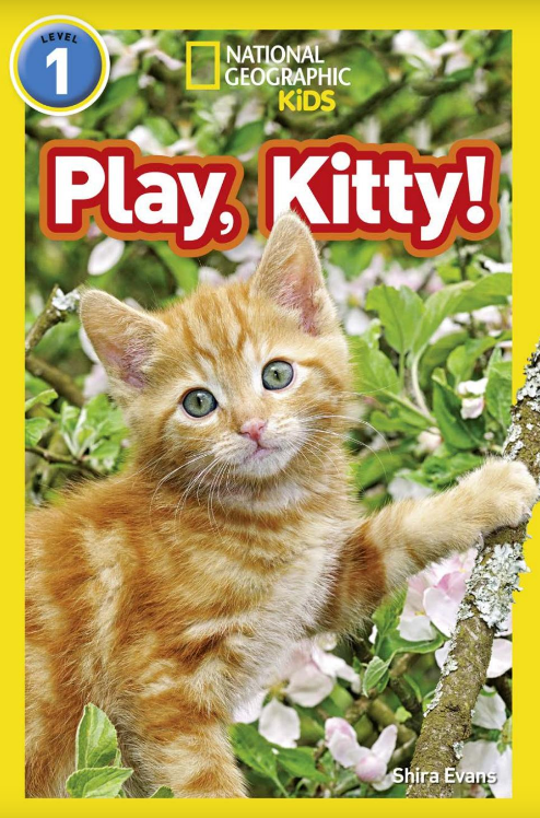 Play, Kitty