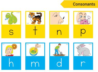Phonics_HFW_chart_snip Lioncrest Education Home Page Product : PLD Starter Packs