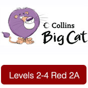 bigcat-2-4red2a