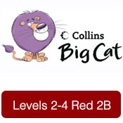 bigcat-2-4red2b