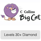 bigcat_30_diamond